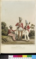 Seapoys of the Bombay, Bengal and Madras Armies